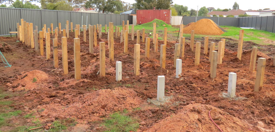 stump holes for a straw bale house