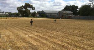 Dry ground in summer